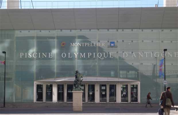 Piscine Olympique Antigone