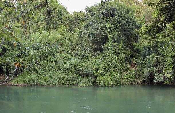 Río La Perla