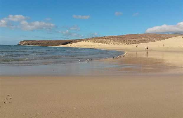Sotavento´s Beach