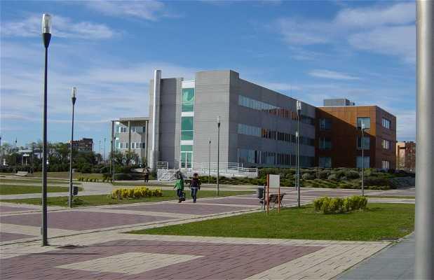 Universidad Rey Juan Carlos (Fuenlabrada)