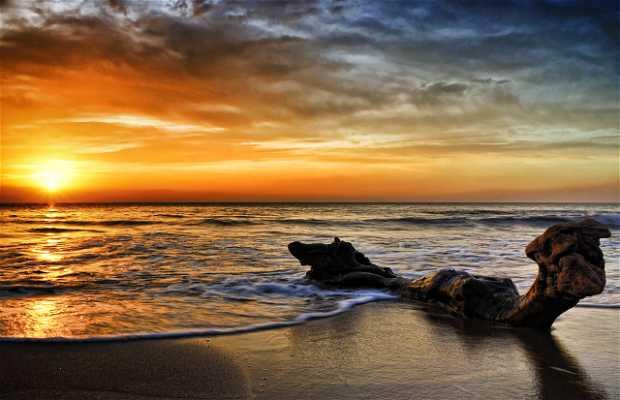Spiaggia Los Escullos