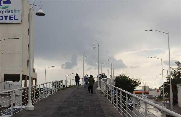 Ponte do Amor