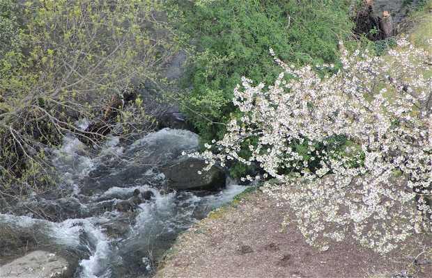 Ruta Sierra de Gredos y Valle del Jerte