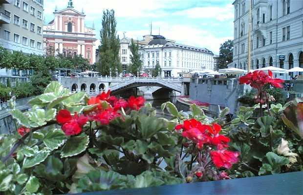 Ponte dei calzolai di Lubiana