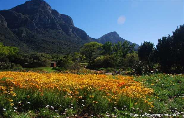 Giardino Botanico Nazionale Kirstenbosch