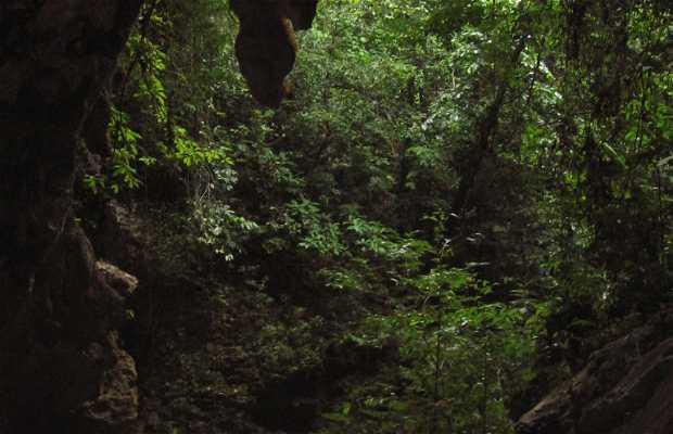 Cuevas de la Candelaría