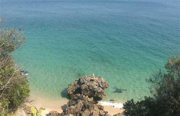 Praia dos Galapos
