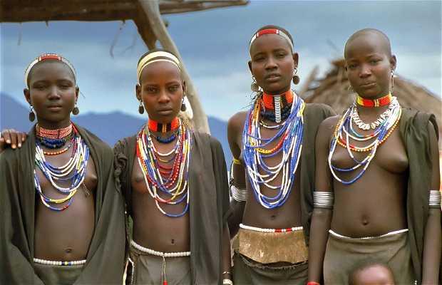 La Tribu Erbore