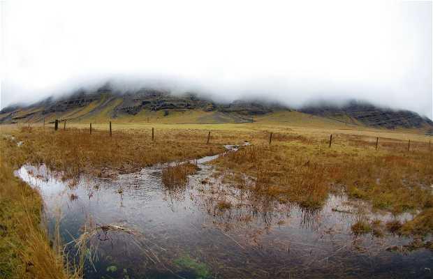 Alftafjörður