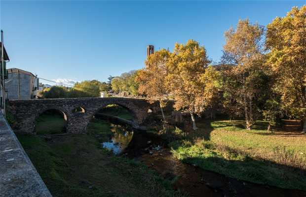 Puente de Sant Joan de les Fonts