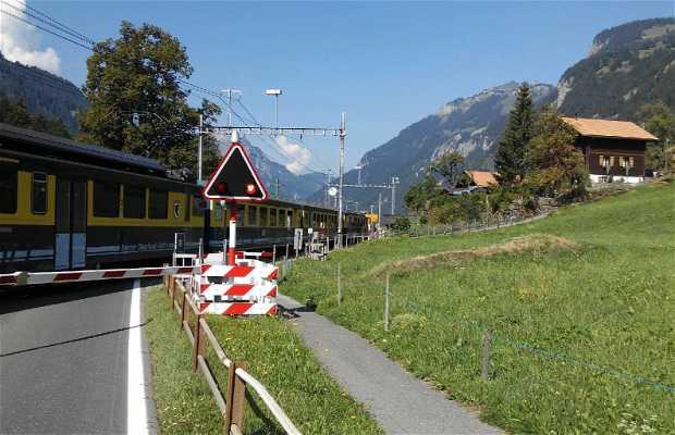 Grindelwald y su entorno