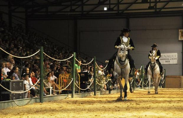 Campeonato Caballos PRE Andalucía Oriental