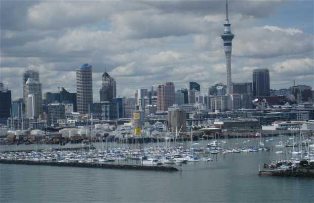 Bahia De Auckland