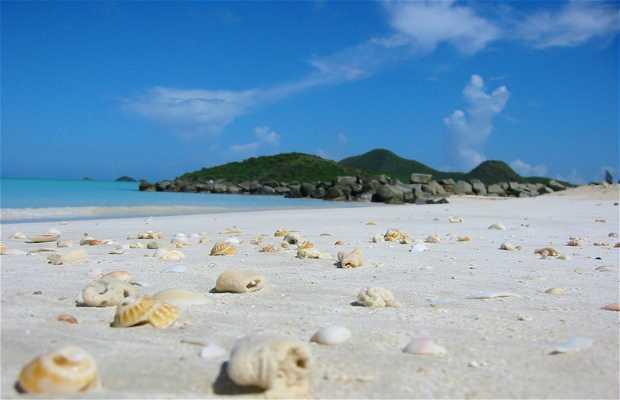 Playa de Half Moon Bay