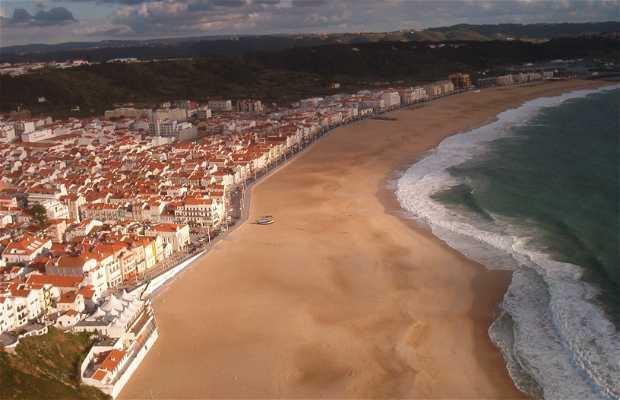 113 Photos Of Praia Da Nazaré Beach