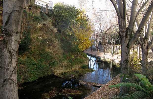 The Cerezuelo River Trail