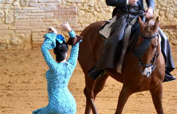 Caballerizas Reales Córdoba