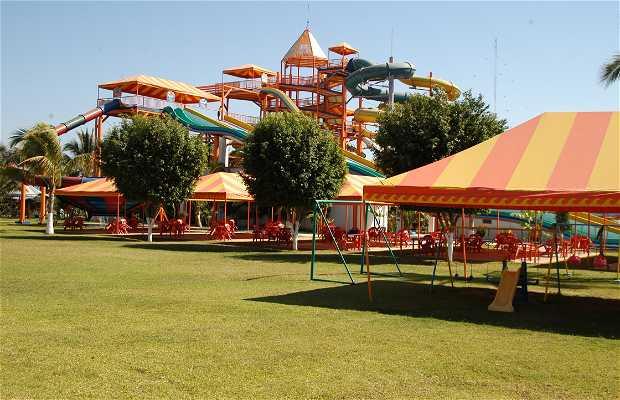Sea Life Park en Vallarta