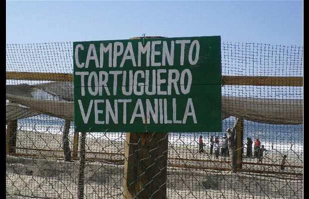 Campamento Tortuguero de Ventanilla