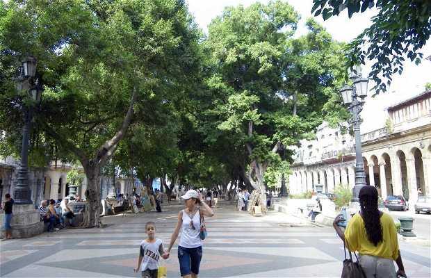 Passeo del Prado