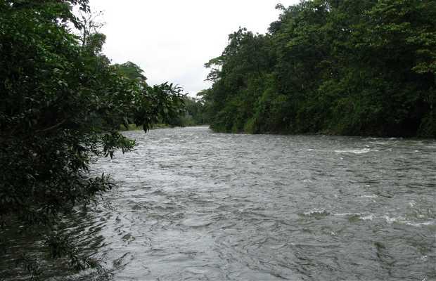 Río Sarapiqui
