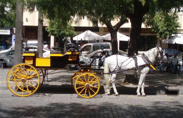 Passeios por Sevilha