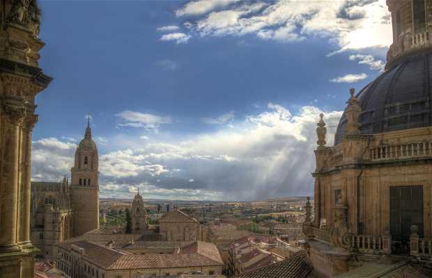 Campanario de la catedral de Salamanca