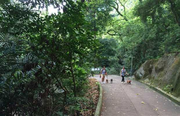 Jardin botanique et zoo