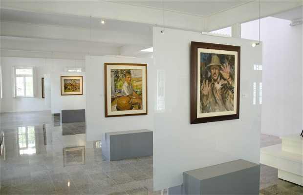Museo Guido Viaro