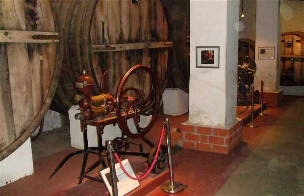 El Museo del Vino