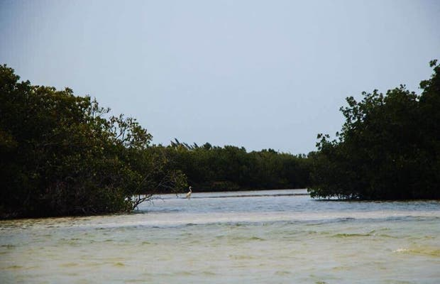Río Santa Paula