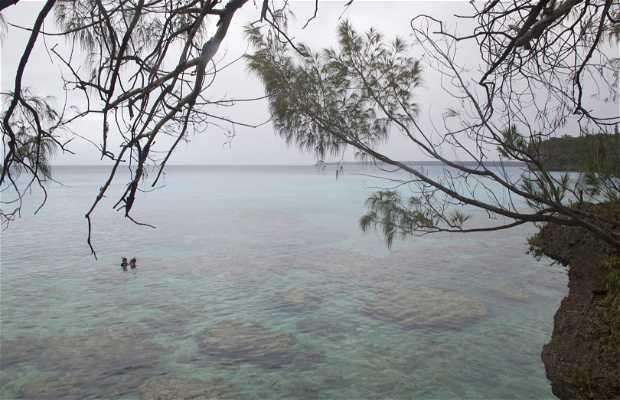 Jinek Bay