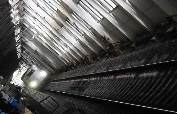 Shinkansen High Speed Trains