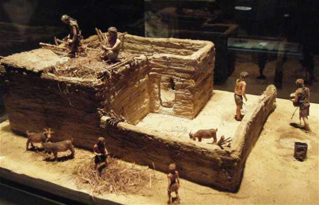 Neolitico : de nomadas a sedentarios