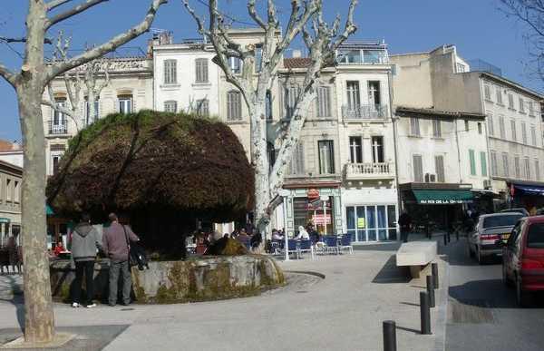 Plaza Crousillat