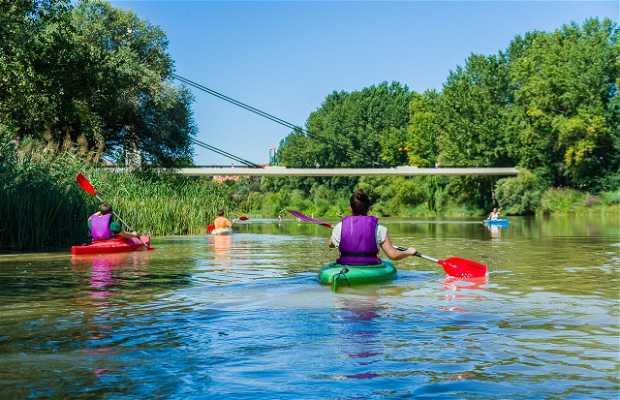Kayak por el Ebro en Logroño