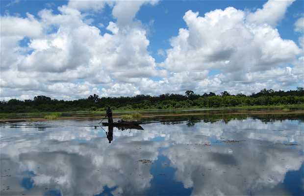Mar de los hipopótamos de Bala