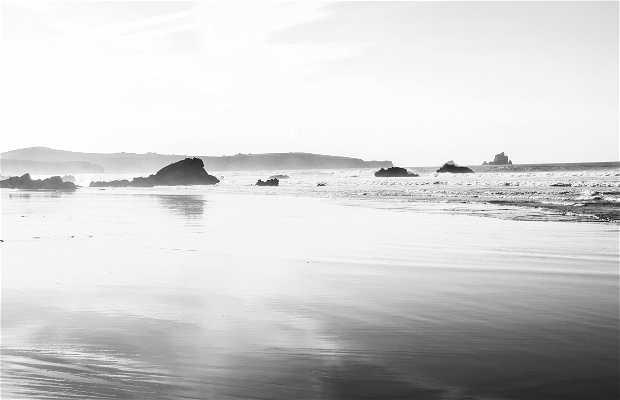 Playa de Liérganes