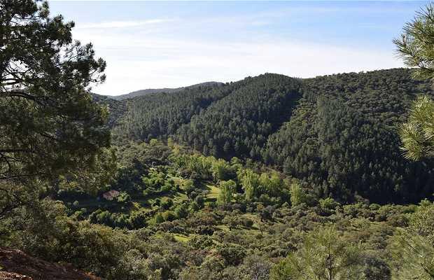 Sendero Aracena - Dehesillas- Minas de Fátima