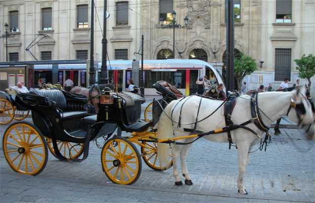 La passeggiata in carrozza per Siviglia