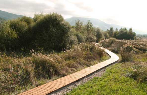 La ruta del Mamut en Padul