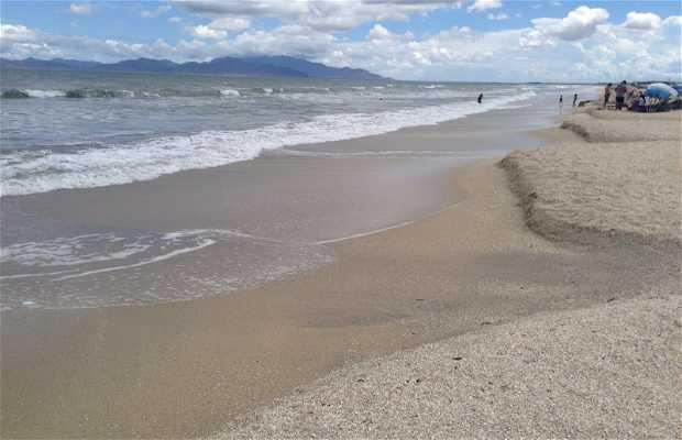 Playa La Restinga