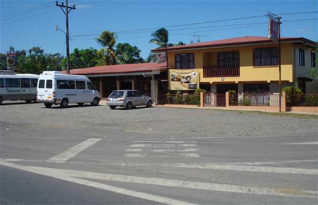Restaurante y Hospedaje Caribbean Dish