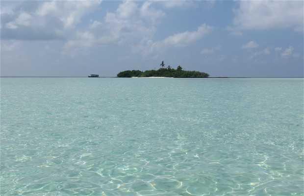Isla de Madivaru,