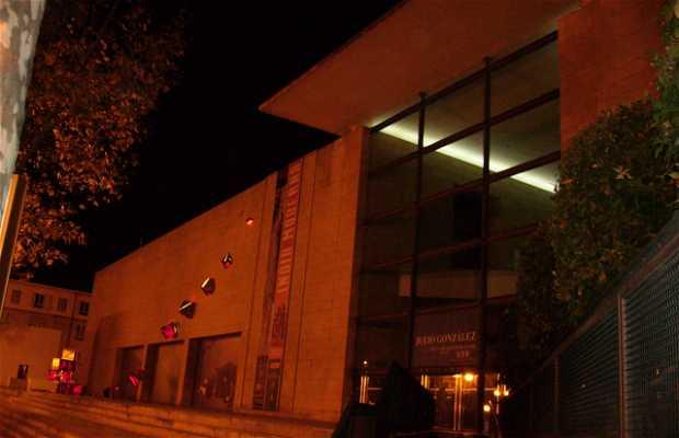 IVAM (Instituto Valenciano de Arte Moderno)