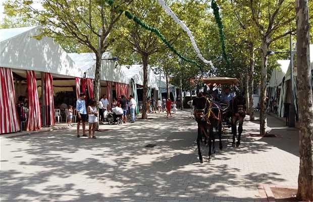 Feria y Fiestas Mayores