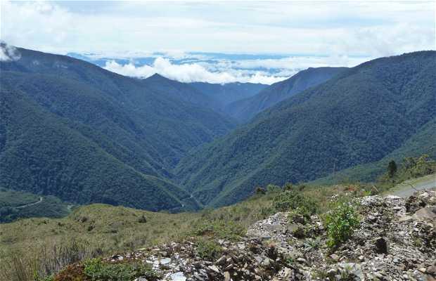 Parc national Manu