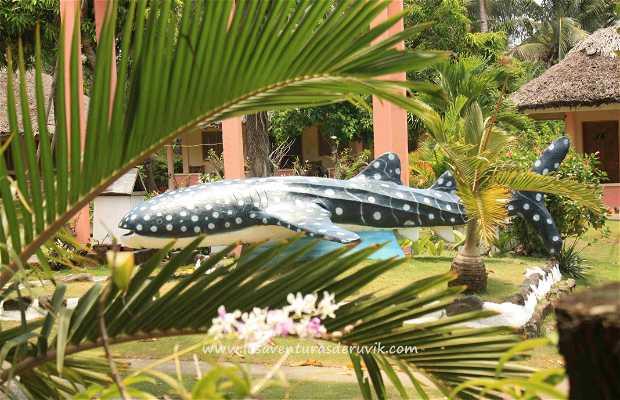 Amor Farm Beach Resort