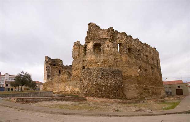Laguna de Negrillos castle