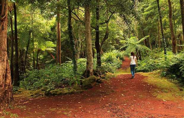 Reserva Florestal de Recreio